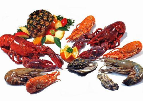 shellfish lobster fresh