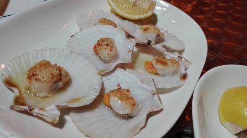 shells scallops seafood