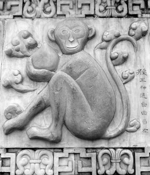 shen monkey chinese horoscope
