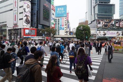 shibuya crossing  busy crossing  crowds