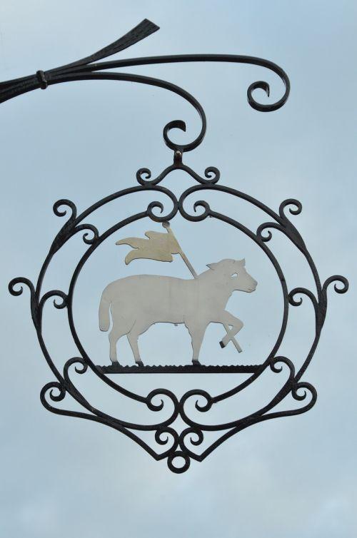 shield board sheep
