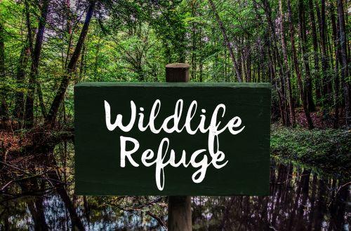shield nature conservation animal welfare