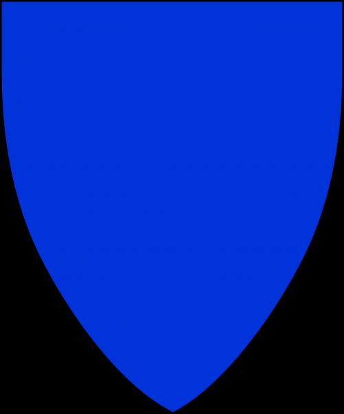 shield blank shape