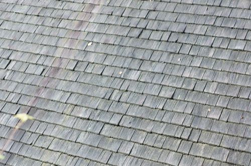 shingle roof shingle roof