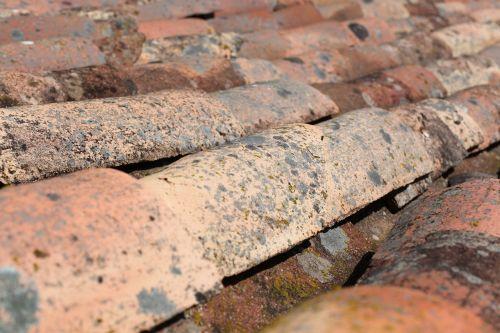 shingles roof house