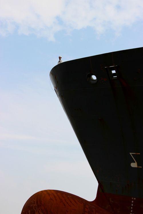 ship freighter bug
