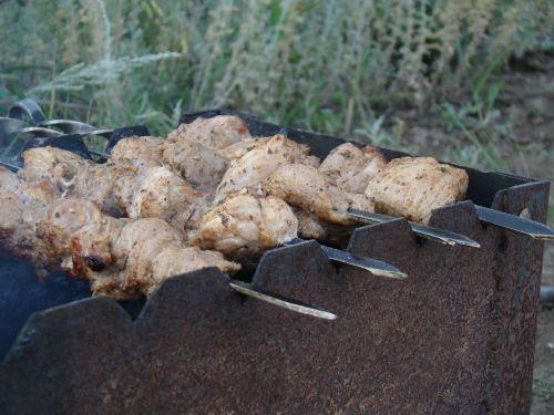 shish kebab mangal skewers