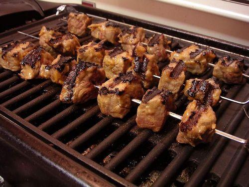 shish kebab electric grill shish kebab skewers