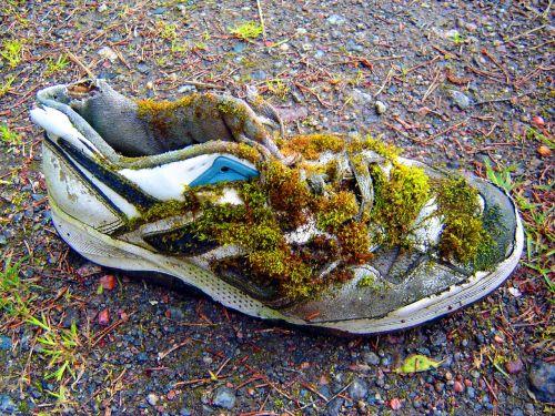 shoe sport laziness