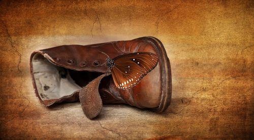 shoe leather shoe children's shoe