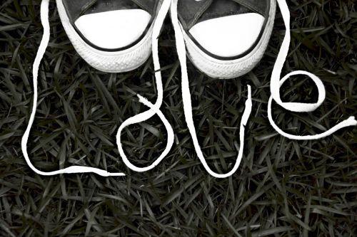 shoe-laces laces shoes