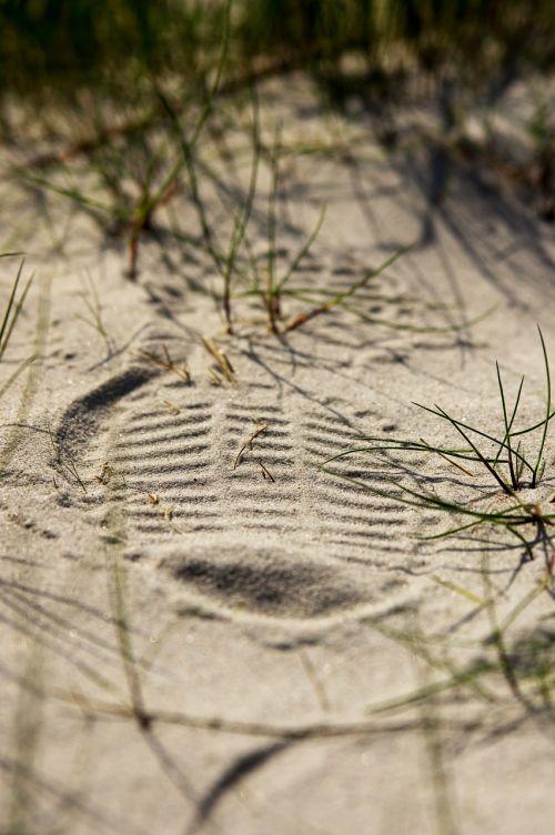 shoe print sand grass