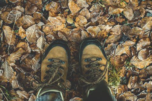 shoes hiking shoes hiking