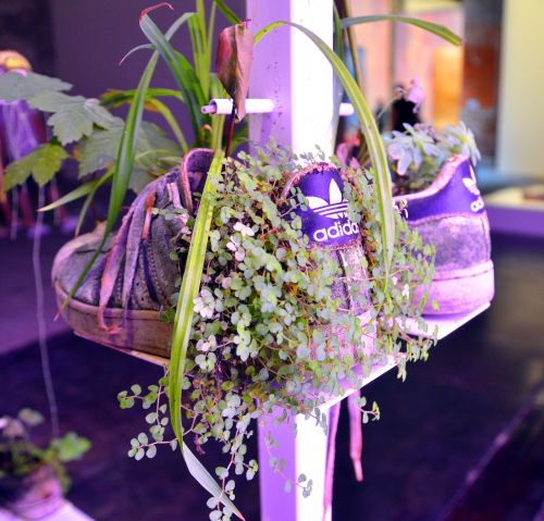 shoes plant recycling