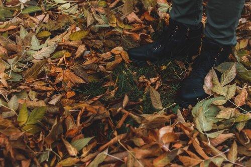 shoes  autumn  autumn nature