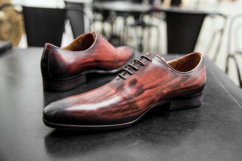 shoes men  shoe  shine monstrap