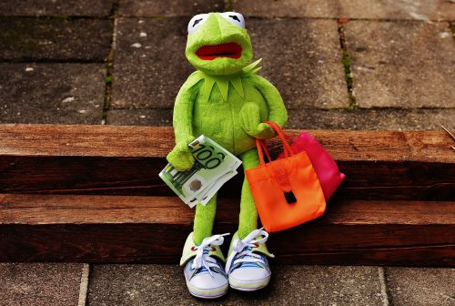 apsipirkimas,kermit,pinigai,euras,pirkinių maišeliai,maišeliai