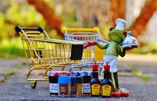 shopping cart shopping frog