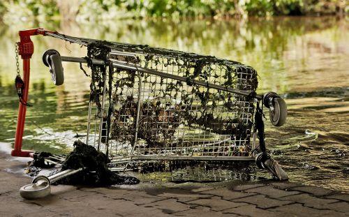 shopping cart river nature
