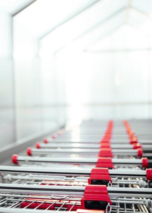shopping carts store supermarket