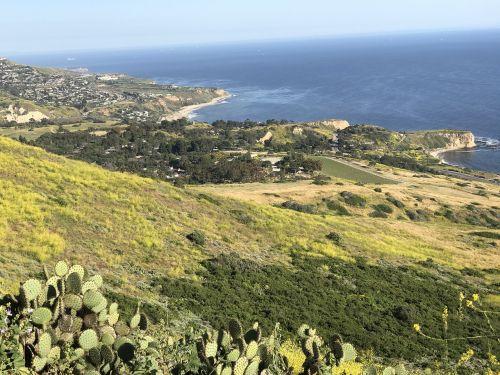 shoreline vista coast