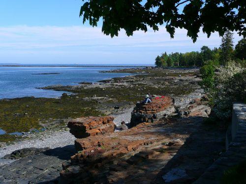 shoreline water rocks