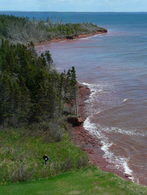 shoreline seascape water