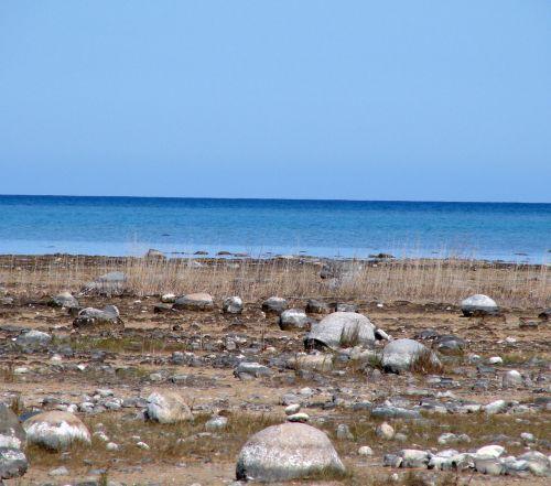 Shoreline And Lake Michigan