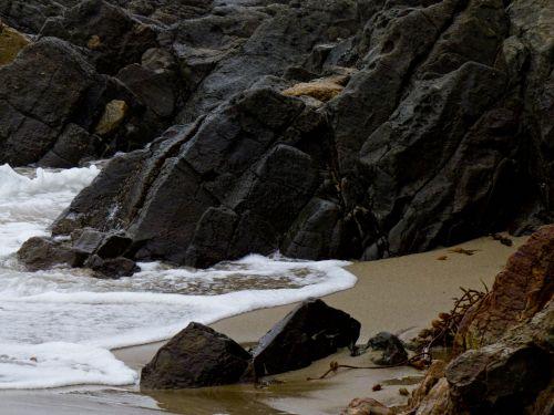 Shoreline Waves