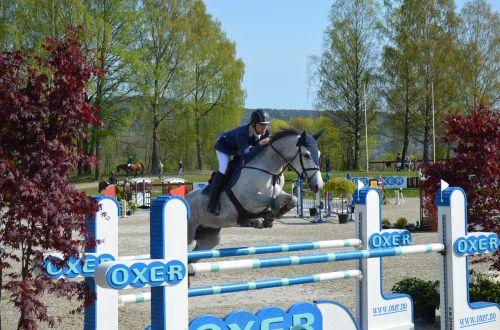 rodyti džiaugsmą,rodyti jumper,jodinėjimas,Sportas,varzybos,šokinėja,arklys,įvykis,Rodyti,šokinėti,raitelis,arkliai,kliūtis,barjeras,gyvūnas,Jodinėjimas,showjump,konkuruojantis,lauke,arkliai