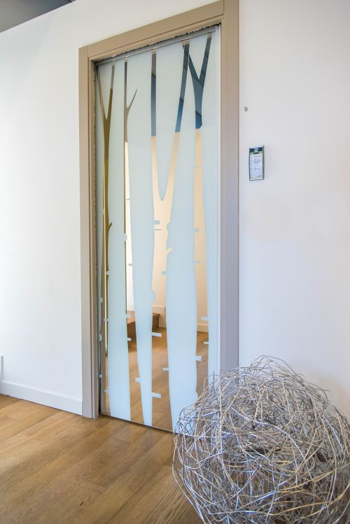 showroom glass doors sliding doors