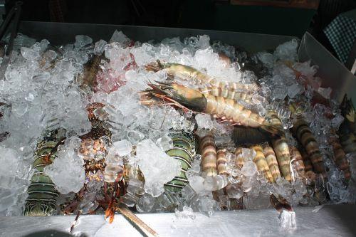 shrimp food seafood