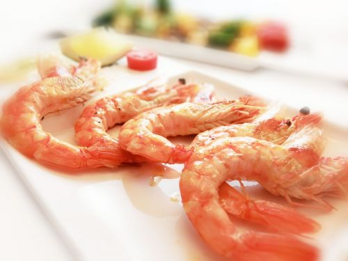 shrimp seafood catering