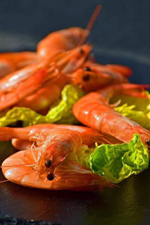 shrimp  cooked  unpeeled