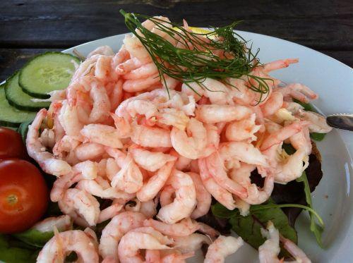 shrimp shrimp sandwich bread