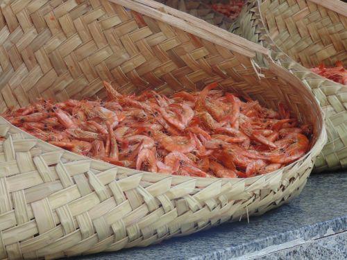 shrimp typical food brazil