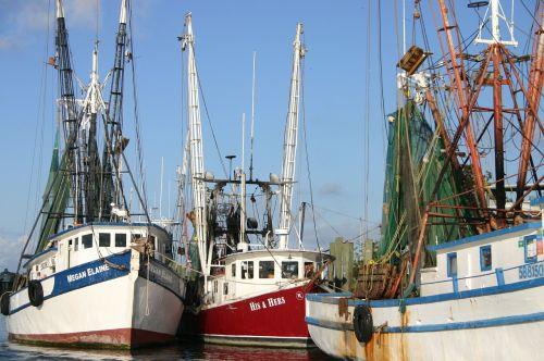 shrimp boats coast