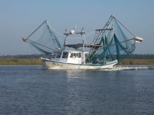 shrimp boat bayou mississippi