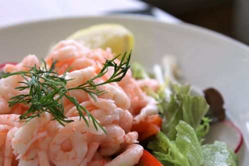 shrimp salad today's lunch shrimp