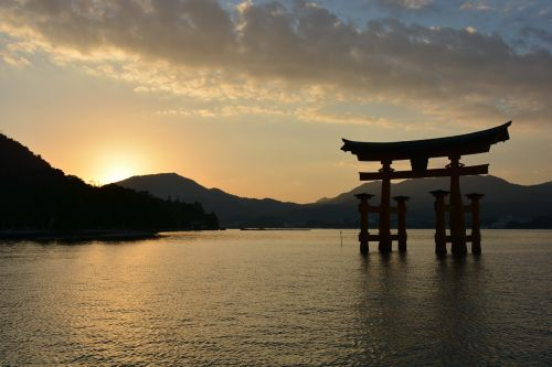 shrine torii sunset