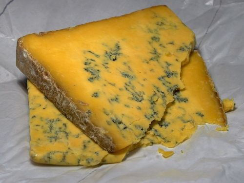 shropshire blue cheese blue mold mold