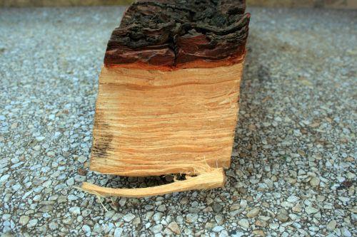 Side And Bark Pf Chopped Wood
