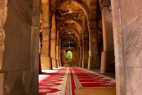 sidi saiyyed mosque  ahmedabad  ahmedabad instagram