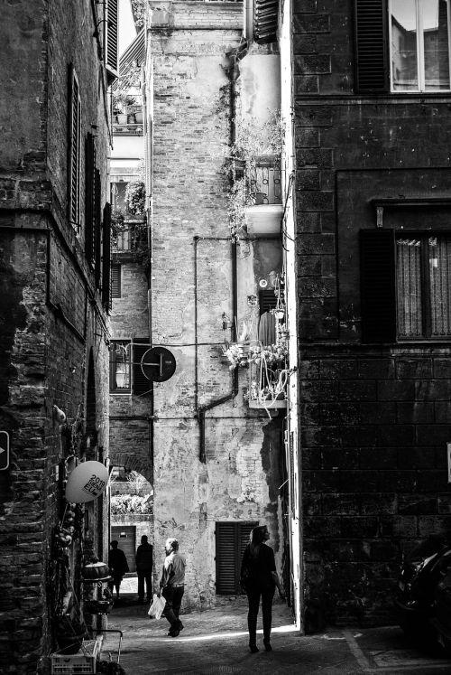 siena italy buildings italy