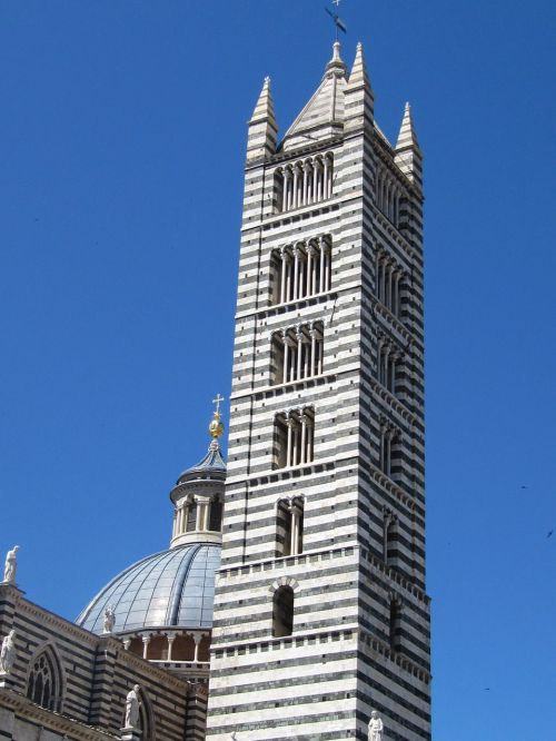 siena campanile dom