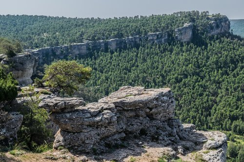 sierra  basin  landscapes