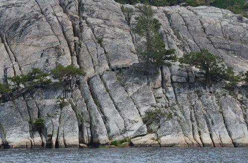 sierra nevada granite pine trees