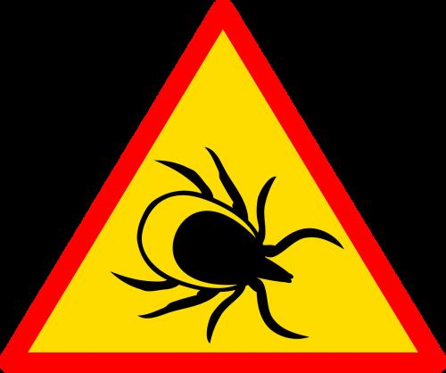 sign road road sign
