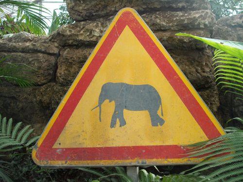 sign danger animals