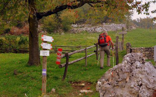 signal excursion walk